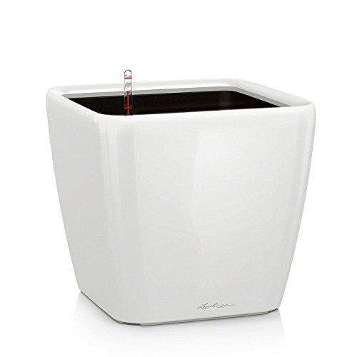 Lechuza Set completo Vaso Quadro Premium 43, Colore bianco lucido