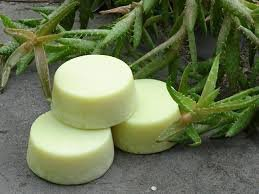 Eucalyptus and Lemongrass Goat Milk Cold Process Soap Kit 2 lb.