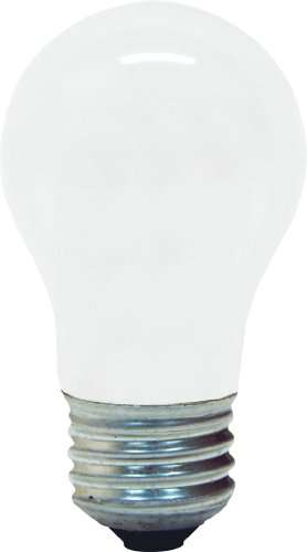 GE Lighting 14029 60-Watt 560-Lumen Decorative A15 Incandescent Light Bulb, Soft White, 2-Pack