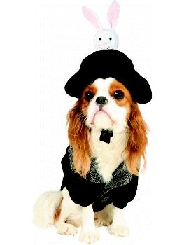 Hat Trick Magician Pet Costume Size Petite