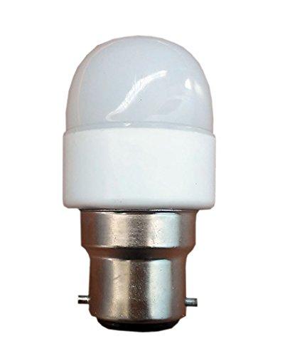 0.2W White LED Bulbs (Pack of 10)
