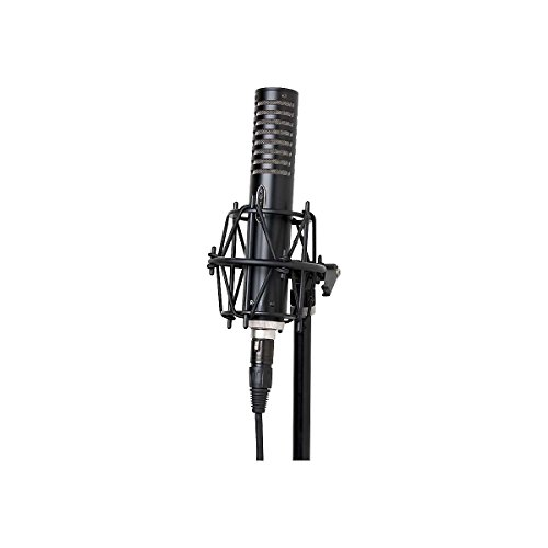 Royer Labs R-101 Large-Element Ribbon Microphone, Black