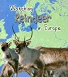 Watching Reindeer in Europe (Wild World)
