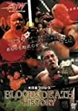 大日本プロレス BLOOD & DEATH HISTORY [DVD]