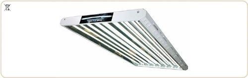 T5 LightWave LW24-HO 2ft / 600mm 4-tube (96W) Grow Light