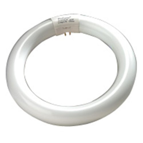 Halco 37503 - Fc8T9Dl Circular T9 Fluorescent Tube Light Bulb