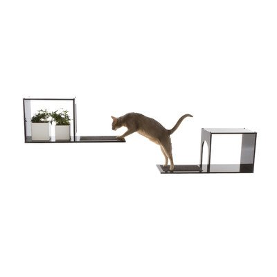 Cat stands and climbing towers - Wall mounted cat climber ...