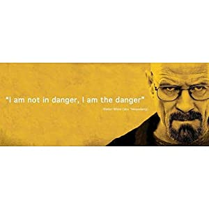 Amazon.com: (12x36) Breaking Bad I Am the Danger