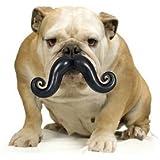 Humunga Stache Durable Dog Toy--