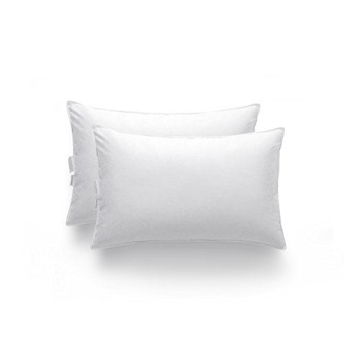 zestilk-white-goose-down-and-feather-extra-firm-pillow-set-of-2-standard-pdp01