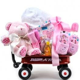 Baby girl radio flyer wagon gift basket christmas and new year baby girl radio flyer wagon gift basket negle Choice Image