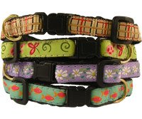Buy Kitty Kollection Safety Collars – Daisy