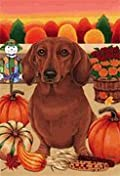 Dachshund Red - by Tomoyo Pitcher, Autumn Themed Dog Breed Flags 12 x 18
