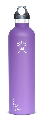 Hydro Flask Insulated Stainless Steel Water Bottle, Narrow Mouth, 24-Ounce, Acai Purple