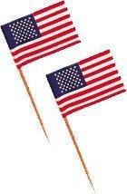 american-flag-picks-by-century-novelty