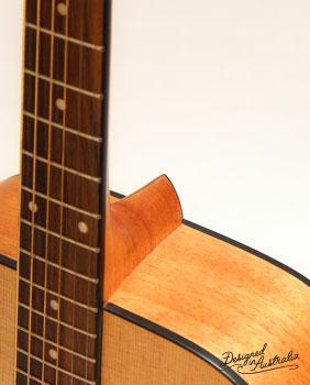 Amazon.com: Ashton D20 Dreadnought Acoustic Guitar: Musical