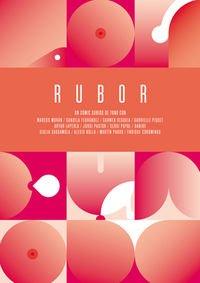 rubor-novela-grafica