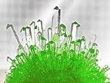 Infactory-Kristallzucht-Element-Wasser-Zchten-Sie-einfach-Ihre-eigene-kleine-Wunderwelt