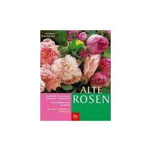 Alte Rosen: Alle wichtigen Arten und Sorten im Porträt. Geschichte · Verwendung und Gestaltung ·