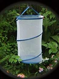 Butterfly Growing Kit w Cage & Butterflies Larvae Coupon