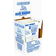 JT EATON 182B Scented Glue Board Trap Pack of 72