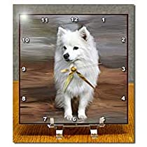 Dogs American Eskimo - American Eskimo Toy Dog - Desk Clocks