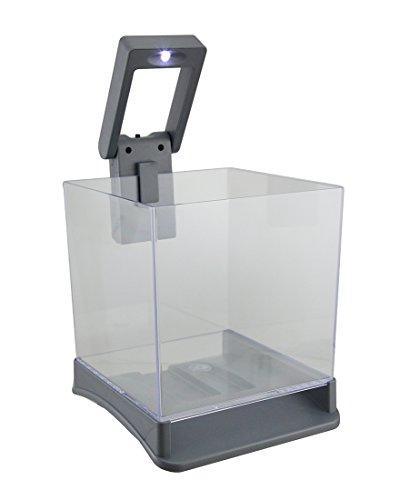 Aqua Culture Betta Cube with LED Light-Aqua-Tech-ML90579 by AquaTech (Betta Fish Cube compare prices)