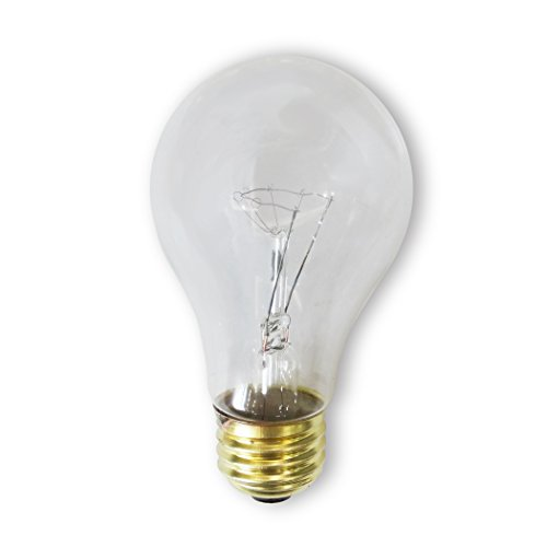 Bulbrite 100A/CL/RS-2PK 100 Watt Incandescent A19 Rough Service Bulb, Clear, 2 Pack (Clear Bulbs compare prices)