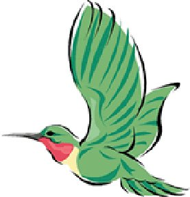 Amazon.com: Hummingbird Clip Art & Stock Photo Image CD