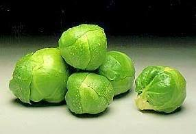 1000 LONG ISLAND IMPROVED BRUSSEL SPROUTS Brassica Oleracea Gemmifera Vegetable Seeds