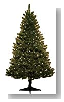 Victoria Pine 6.5 Foot Pre-Lit Artificial Christmas Tree: 750 Tips, 500 Clear SureBright Lights <b>Free Holiday Music CD Included, & Free 2-Year Extended Warranty</b>