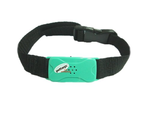 Pet Tag Pro No Bark Collar, Green, Small