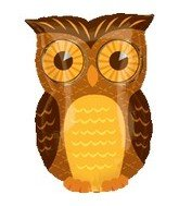 "18"" Fall Owl Mylar Balloon - 1"