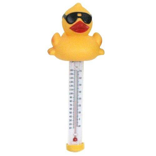 7000 Derby Duck Spa gioco piscina e giardino Themometer, prato, fontana, manutenzione