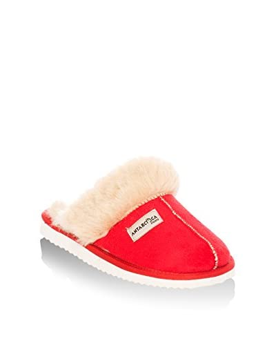 Antarctica Pantofola Da Casa
