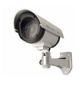esky-finta-telecamera-di-sorveglianza