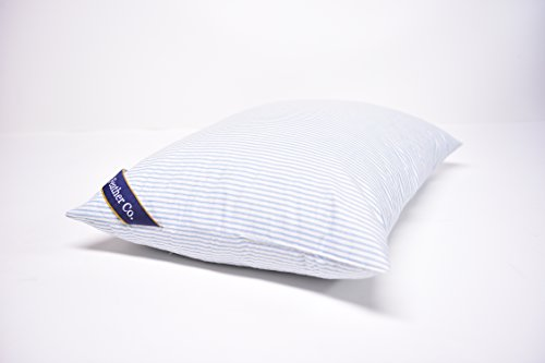 6 best feather pillows 2017 home reviewed for Best soft down pillow