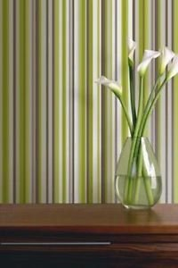 Vibrant Sophia Stripe Wallpaper - Green from New A-Brend