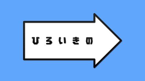 (仮) ひろいきの vol.1 [DVD]