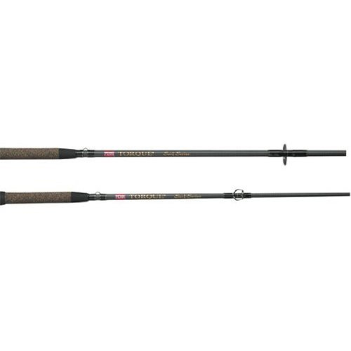 Review best fishing rods fishing rod reviews penn torque for Best surf fishing rods