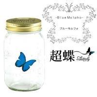 超蝶(ちょうちょう) ブルーモルフォ