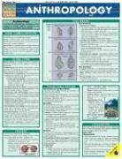 Anthropology Laminated Reference Guide (Quickstudy: Academic)