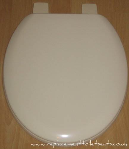 Champagne Coloured Toilet seat