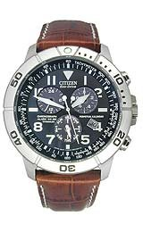 Citizen Men's Eco-Drive Perpetual Calendar watch #BL525002L