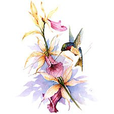 Hummingbird/Orchids T-Shirt
