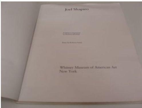 Joel Shapiro: Whitney Museum of American Art