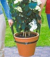 Kübel-Muli, Tragegurt für Blumenkübel, große Pflanzenkübel, Pflanzen