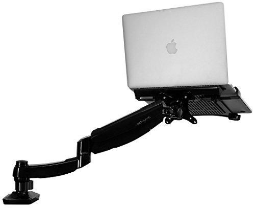Loctek 2 in 1 Single LCD Arm Desk Laptop Mount Fits 10