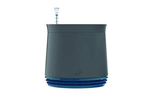 airy-hochwirksame-luftreinigung-mit-zimmerpflanzen-in-steingrau-space-blue-blau
