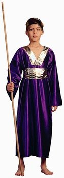 Kid's Purple Wiseman Biblical Costume (Size: Medium 810)